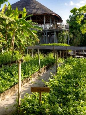 Six Senses Laamu, Maldivene