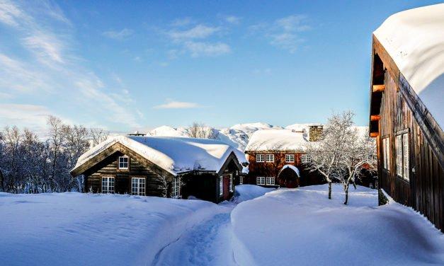 Harahorn i Hemsedal: En hotellomtale