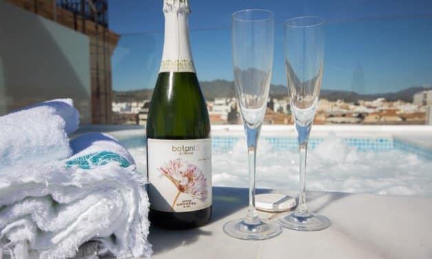 Kul Airbnb leilighet i Malaga med takterrasse