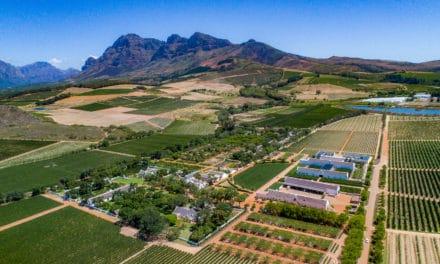Babylonstoren, en sanseopplevelse utenfor Cape town