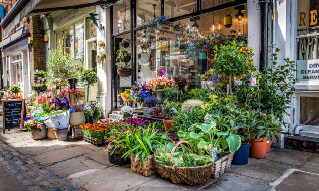 Sjarmerende idyll i landlige Hampstead, London