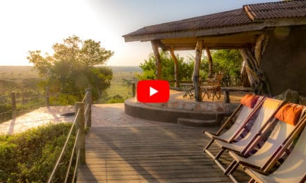 Eagle View, Masai Mara: En hotellomtale