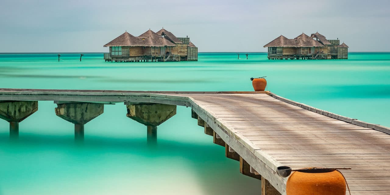 Møt de utrolige naboene -Gili Lankanfushi, Madivene.